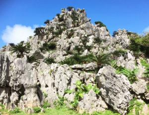 大石林山(だいせきりんざん)