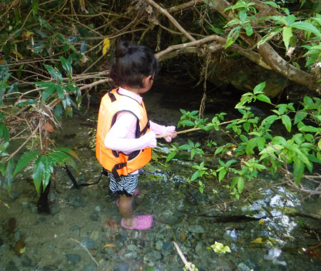 大人気の川遊びのツアー