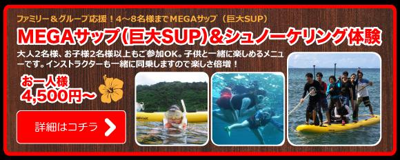 MEGAサップ(巨大SUP)&シュノーケリング体験