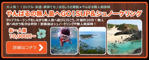 無人島 SUP+シュノーケリング